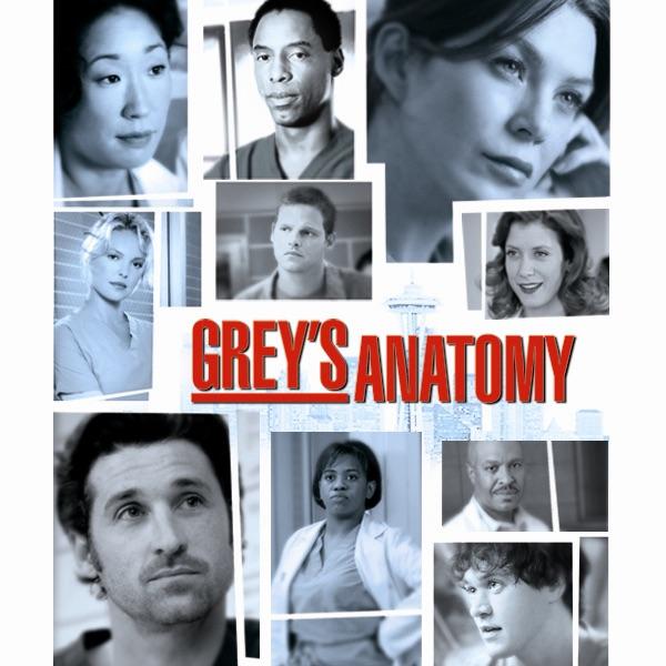 """Grey's Anatomy, Staffel 2"" In ITunes"