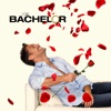 The Bachelor, Season 18 wiki, synopsis