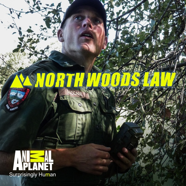northwoods law nh full episodes