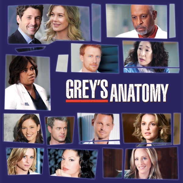 Watch Greys Anatomy Season 6 Episode 24 Death And All His Friends