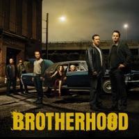 Télécharger Brotherhood, Saison 3 Episode 3