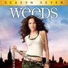 Weeds, Season 7 - Synopsis and Reviews