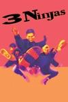 3 Ninjas wiki, synopsis