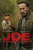 David Gordon Green - Joe - Die Rache ist sein Grafik