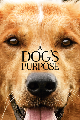 Lasse Hallström - A Dog's Purpose  artwork