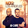 NCIS: Los Angeles - Murder of Crows artwork