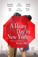 Woody Allen - A Rainy Day in New York artwork
