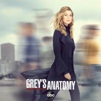 Grey's Anatomy, Season 16 - My Shot Reviews