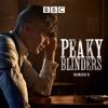 Peaky Blinders - The Shock  artwork