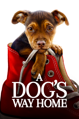 A Dog's Way Home HD Download