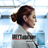 Grey's Anatomy - Sing O' the Times  artwork