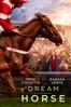 Euros Lyn - Dream Horse  artwork