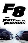 The Fate of the Furious wiki, synopsis