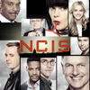 Date With Destiny - NCIS