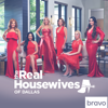 The Real Housewives of Dallas - The Real Housewives of Dallas, Season 3  artwork