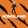 Homeland - Homeland, Season 7 artwork