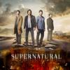 Tod und Wiederauferstehung - Supernatural