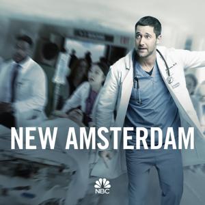 New Amsterdam, Season 1