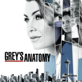 Grey's Anatomy, Season 15 (subtitled)