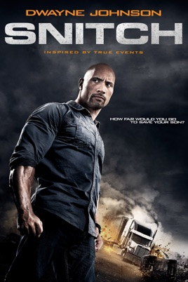 Poster of Snitch 2013 Full Hindi Dual Audio Movie Download BluRay 720p