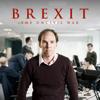 Brexit: The Uncivil War - Brexit: The Uncivil War  artwork