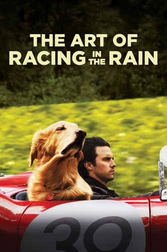 The Art of Racing In the Rain poster