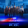 Chicago PD - Burden of Truth  artwork