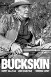 Buckskin wiki, synopsis
