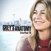 Grey's Anatomy - Im Nebel  artwork