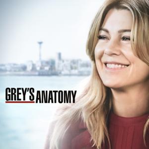 Greys Anatomy, Season 15