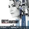 Grey's Anatomy - Rêve éveillé  artwork