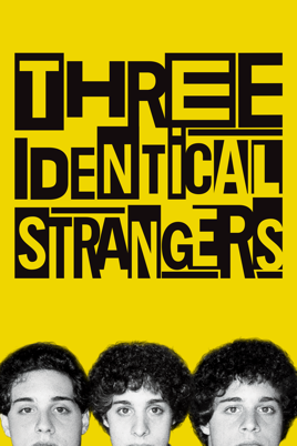 Image result for poster three identical strangers