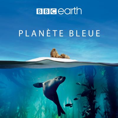 Planète Bleue - Blue Planet II