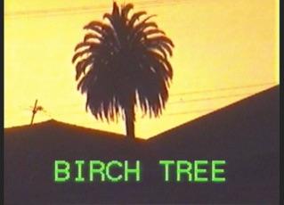 Birch Tree (Lyric Video)