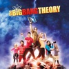 The Big Bang Theory, Season 5 - Synopsis and Reviews
