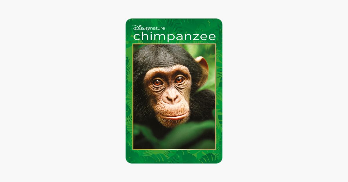 Disneynature: Chimpanzee on iTunes