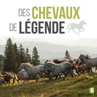 Télécharger Des chevaux de légende Episode 1