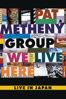 Pat Metheny Group, Lyle Mays, Pat Metheny, Steve Rodby, Paul Wertico, David Blamires, Mark Ledford & Armando Marçal - We Live Here  artwork
