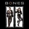 Bones, Season 2 - Synopsis and Reviews