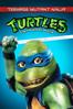 Steve Barron - Teenage Mutant Ninja Turtles  artwork