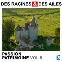 Télécharger Des Racines & des Ailes, Passion patrimoine, Vol. 5 Episode 4