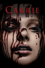Kimberly Peirce - Carrie (2013)  artwork