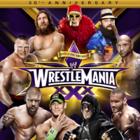 WWE WrestleMania 30 - Winner Enters the WWE World Heavyweight Championship Match artwork