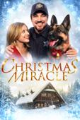 Christmas Miracle (2014)