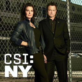 download csi ny season 7