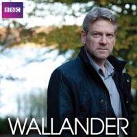 Télécharger Wallander, Saison 3 (VF) Episode 3