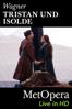 Unknown - Tristan und Isolde  artwork