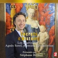 Télécharger Agnès Sorel, première des favorites Episode 1