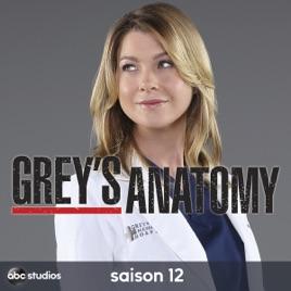 greys anatomy saison 12 streaming