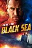 Kevin MacDonald - Black Sea Grafik
